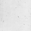 Белая Андромеда